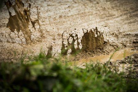 Liquid Mud - EDC Brandnertal 2018.jpg